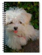 Pure Cuteness Spiral Notebook