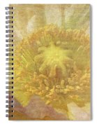 Pure Delicate Center Spiral Notebook