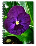 Pure Purple Spiral Notebook