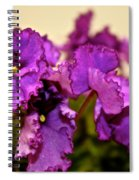 Purple And More Purple Spiral Notebook
