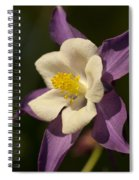 Purple And White Columbine Blossom Facing The Sun - Aquilegia Spiral Notebook