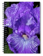 Purple And White Stiped Iris Spiral Notebook