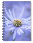 Purple Aster Flower Spiral Notebook