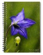 Purple Balloon Flower Spiral Notebook