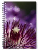 Purple Clematis And Bokeh Spiral Notebook