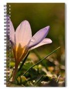 Purple Crocus Spiral Notebook