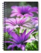 Purple Daisies  Spiral Notebook
