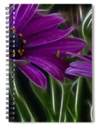 Purple Daisy Spiral Notebook