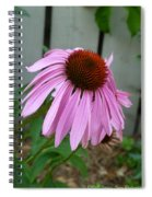 Purple Echinacea Spiral Notebook