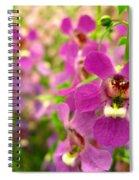 Purple Field Spiral Notebook