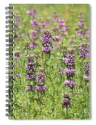Purple Flower Field Spiral Notebook