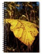 Purple-flowered Raspberry Spiral Notebook