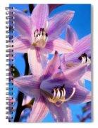 Purple Hosta Blooms Spiral Notebook