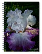 Purple Hues Spiral Notebook