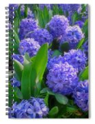 Purple Hyacinths Spiral Notebook
