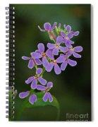 Purple Joy Spiral Notebook