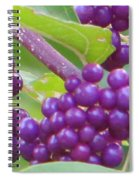 Purple Magical Spheres Spiral Notebook