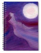 Purple Night 2 Spiral Notebook