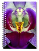 Purple Orchid Macro Spiral Notebook