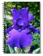 Purple Overload Spiral Notebook