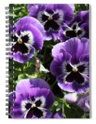 Purple Pansies Square Spiral Notebook