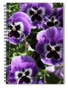 Purple Pansies Square Spiral Notebook