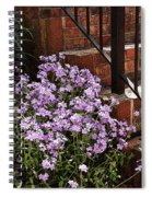 Purple Phlox  Spiral Notebook