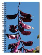 Purple Pods Spiral Notebook