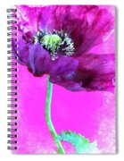 Purple Poppy On Pink Spiral Notebook