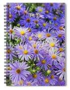 Purple Reigns Spiral Notebook