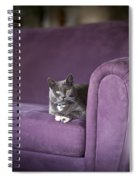 Purple Resplendent Spiral Notebook