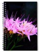 Purple Sedum Spiral Notebook