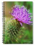 Purple Spikes Spiral Notebook