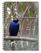 Purple Starling Spiral Notebook