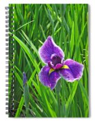 Purple Water Iris Spiral Notebook