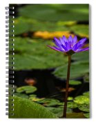Purple Waterlily Spiral Notebook