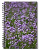 Purple Wildflowers Square Spiral Notebook