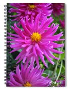 Purpolis Spiral Notebook