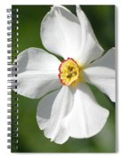 Put On A Happy Face Spiral Notebook