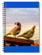 Quail And His Lady Spiral Notebook