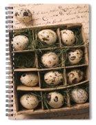 Quail Eggs In Box Spiral Notebook