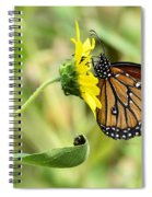 Queen For A Day  Spiral Notebook