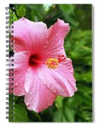 Queen Of The Tropics Spiral Notebook