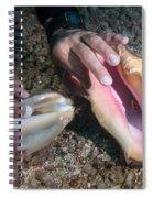 Queen Vs Milk Spiral Notebook