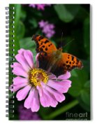 Question Mark Butterfly And Zinnia Flower Spiral Notebook