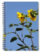 Quicksilver Sun Spiral Notebook