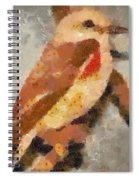 Quiet In The Corner Spiral Notebook