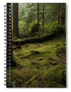 Quietly Alive Spiral Notebook