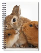 Rabbit And Guinea Pigs Spiral Notebook