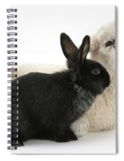 Rabbit And Lamb Spiral Notebook